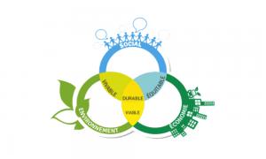 Outils et ressources pour vous aider à en savoir plus sur la durabilité