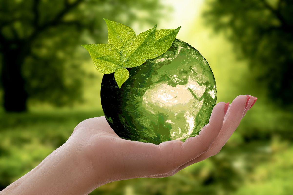 12 choses à faire pour sauver la Planète