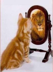 conscience de soi, émotion
